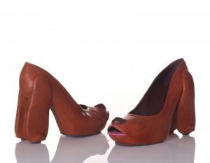 chaussure chien 1